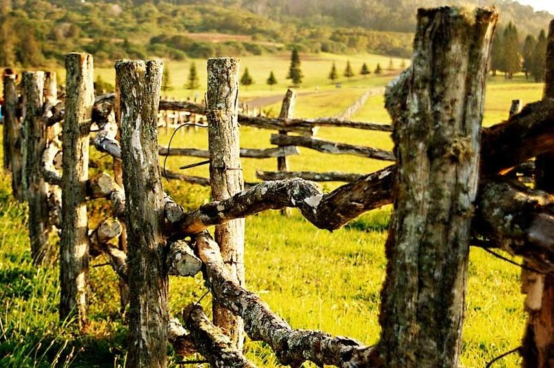 Nature-photograph-of-wooden-horse-fence