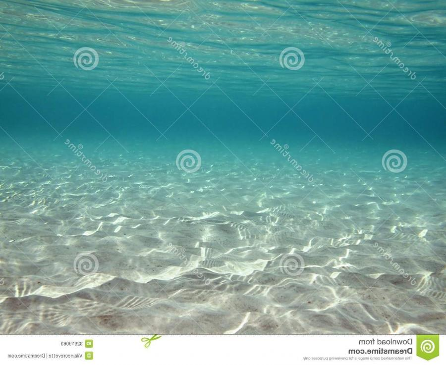 Underwater ripples of sunlight reflected on a sandy sea floor in...