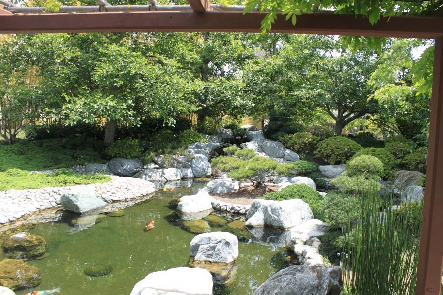 Japanese garden pond designs photos for Japanese pond design ideas
