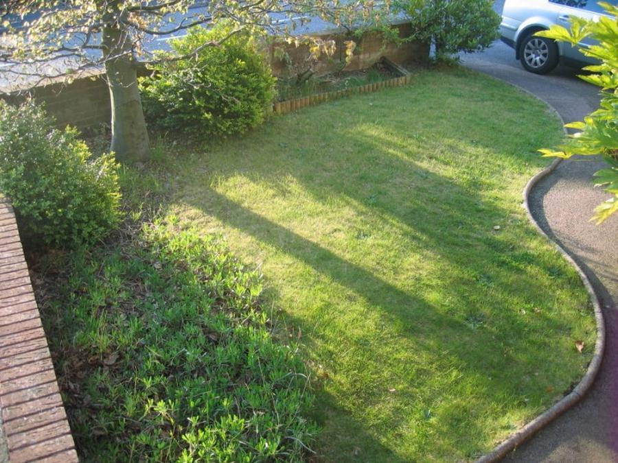 Small front garden photos for Garden design internship