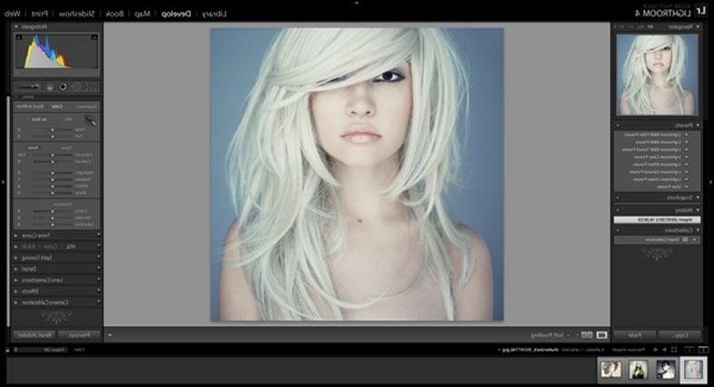 Lightroom Adjustment Brush | Lightroom 4 is a powerful piece of...