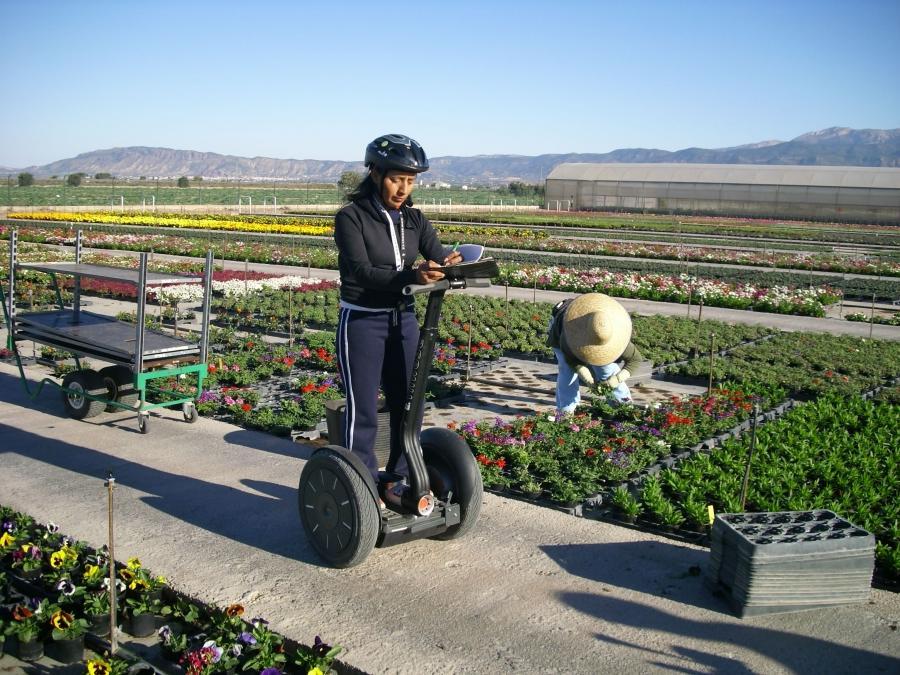 Garden center photos - Viveros bermejo ...