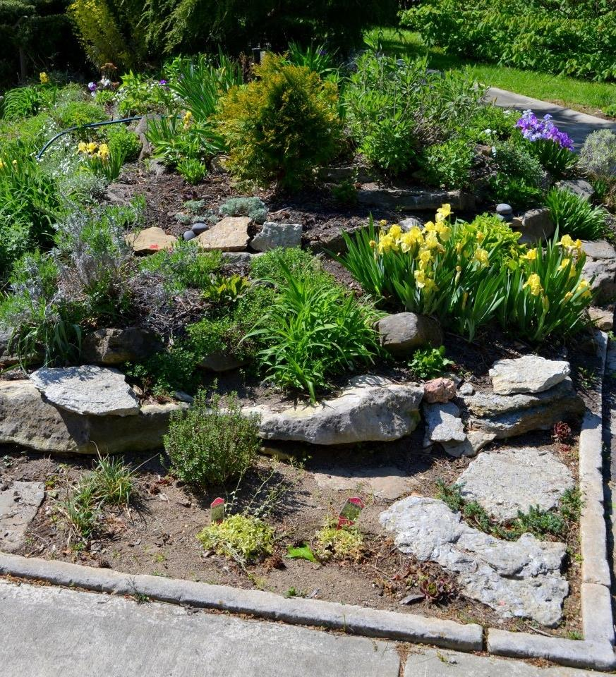 Small rock garden photos for Small rock garden designs