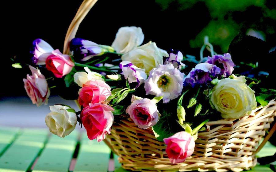 Flower Baskets Hd : Flower basket photo