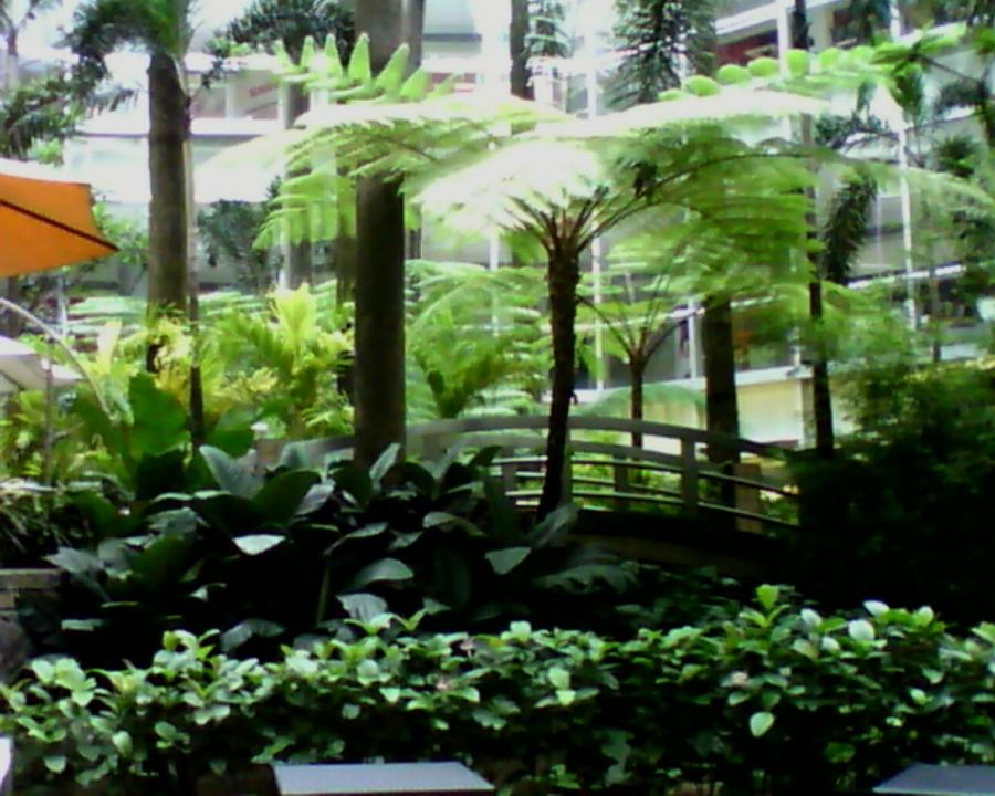 Garden landscape photos philippines for Filipino landscape architects