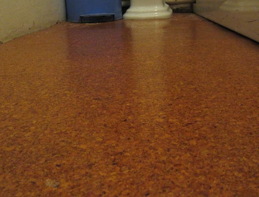 Cork Board Flooring Photos