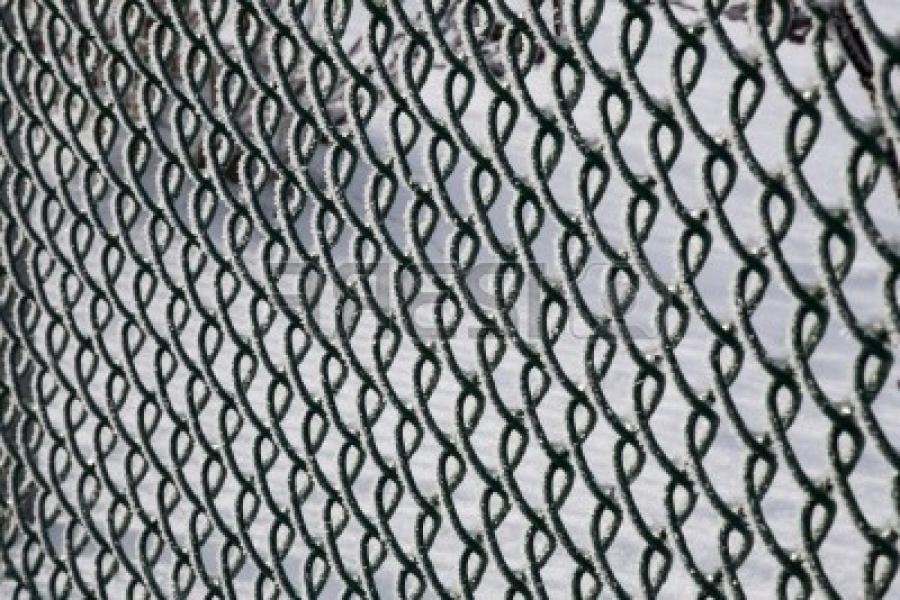 Chain link fence covered in frost