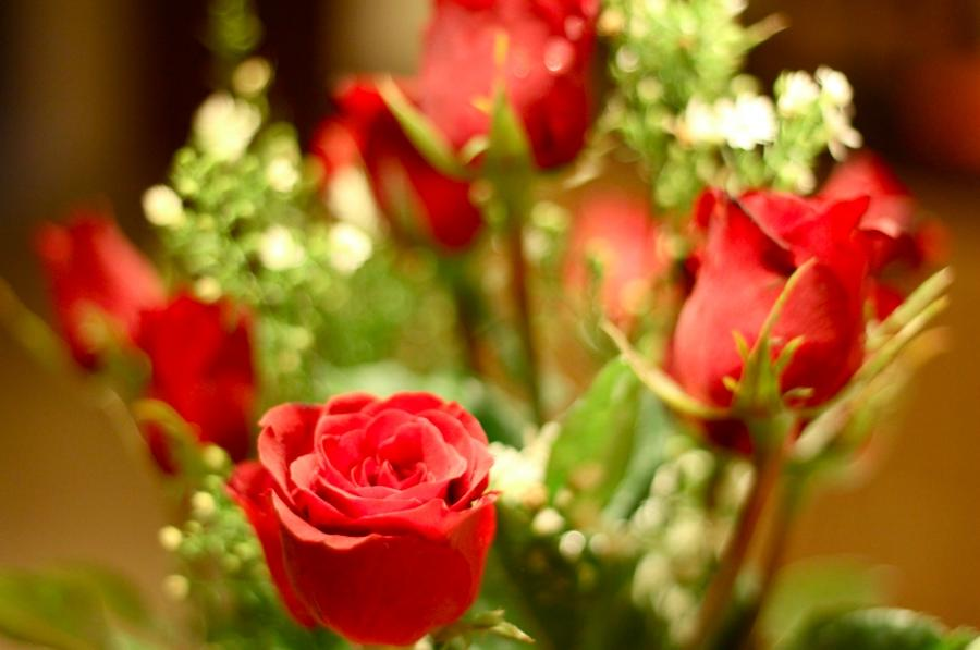 best flowers in the world photos