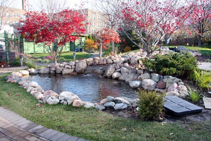 Pond Gardens Photos