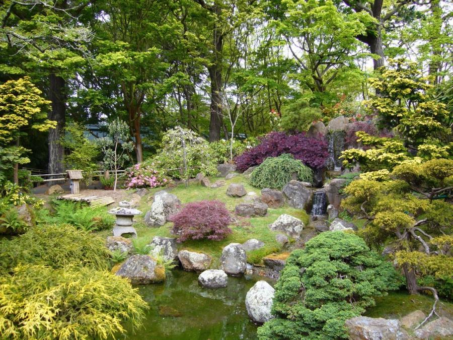 Garden Garden Landscape Photo