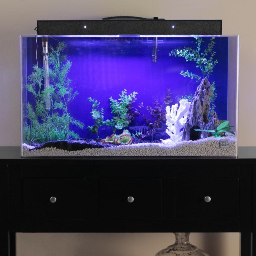Aquarium combos photo rectangular seaclear for Rectangle fish tank