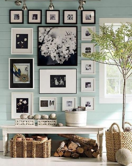 Photograph Display Hallway Design Ideas