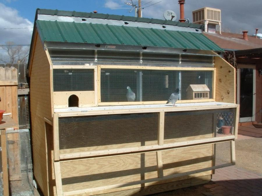 pigeon house plans and photos  steel dog house design