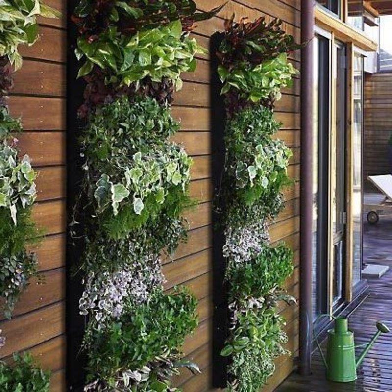 Висячие сады. ландшафтный дизайн участка, озеленение и благо.