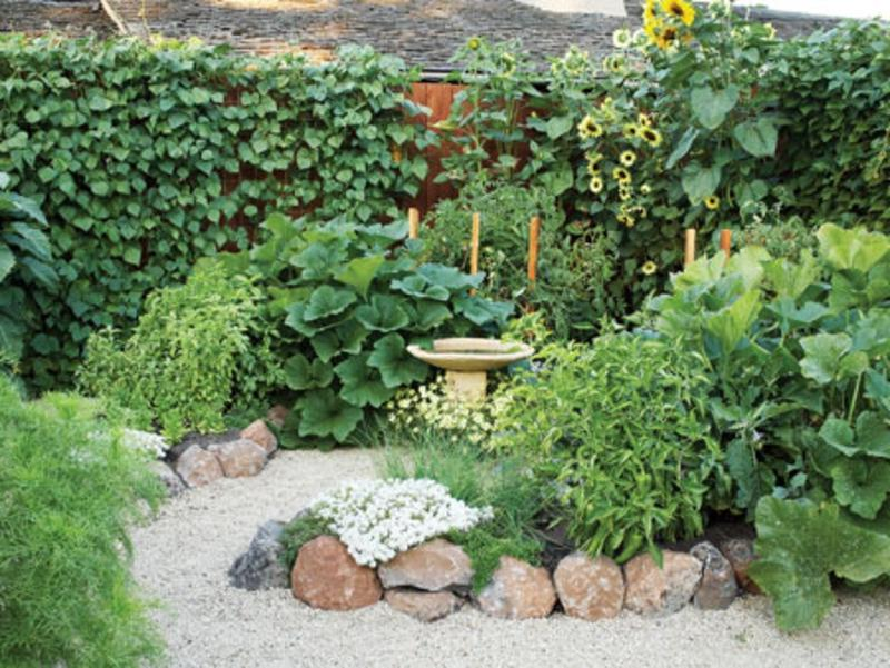 Vegetable garden design photos for Perfect garden layout