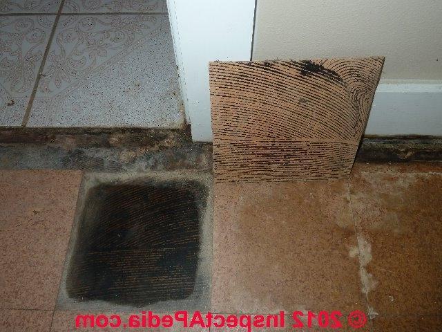 Asbestos Tiles Glue Photos