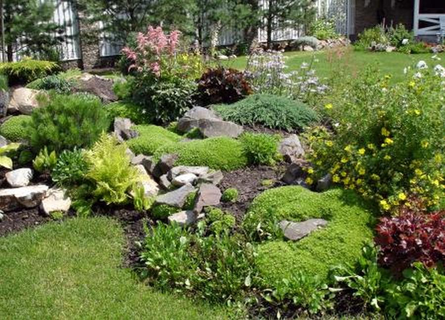 Simple rock garden photos for Simple rock garden designs