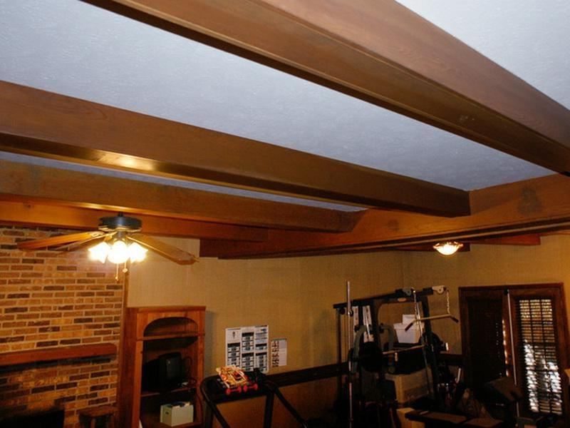 ... Basement Ceiling Ideas Fan Design Interior