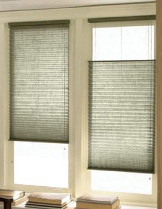 Photo Blinds For Window