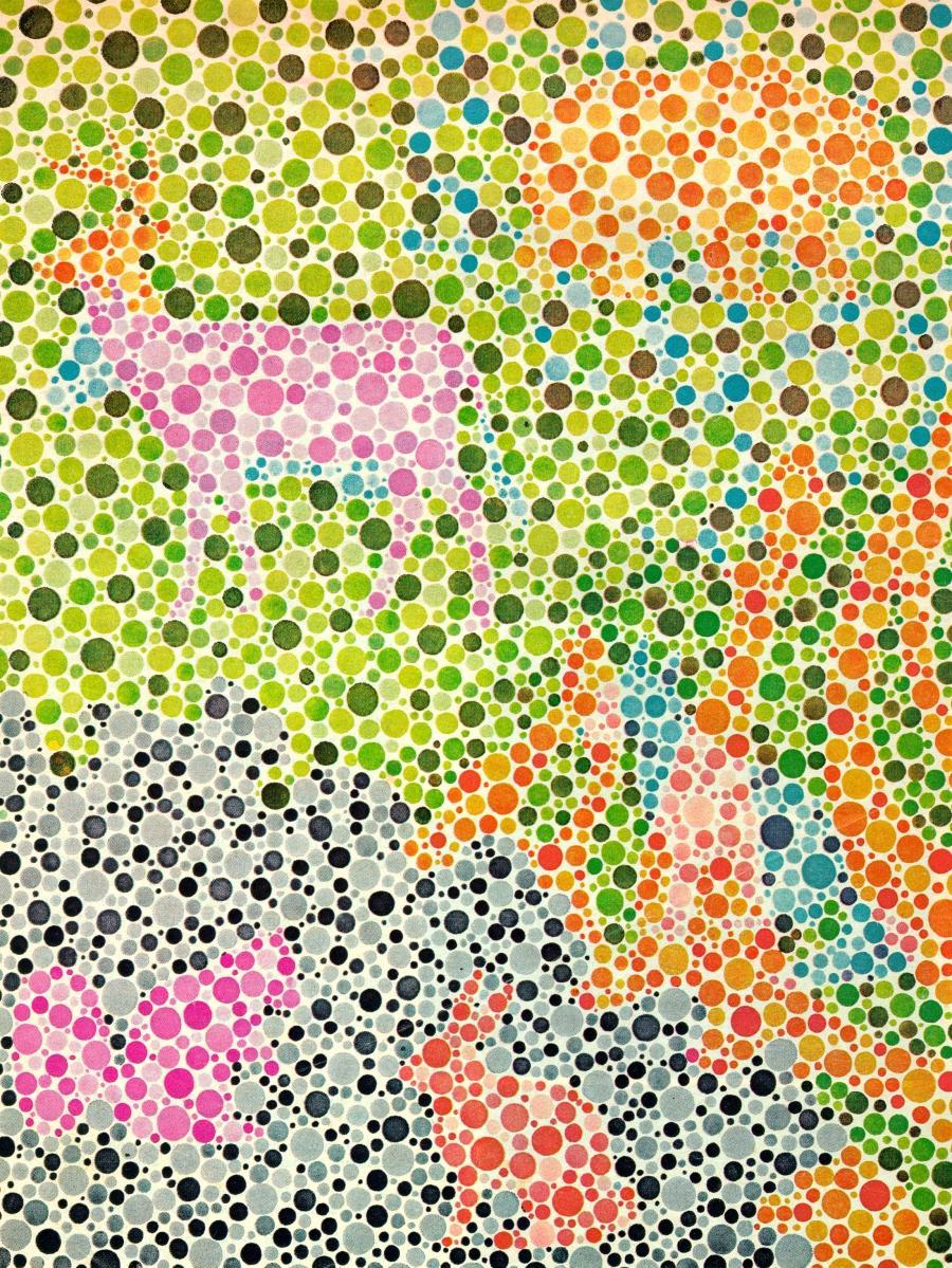 Pediatric Color Blind Test - Garden View Landscape