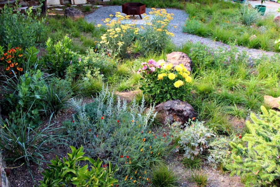 California Native Gardens Photos