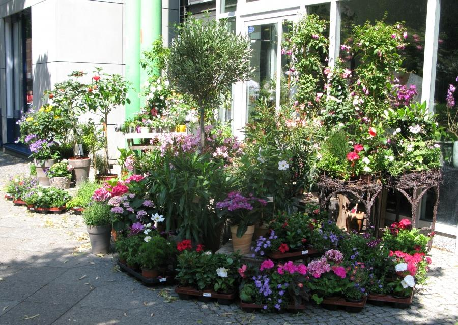 Here are some porch and balcony gardens we saw in Berlin. Some of...