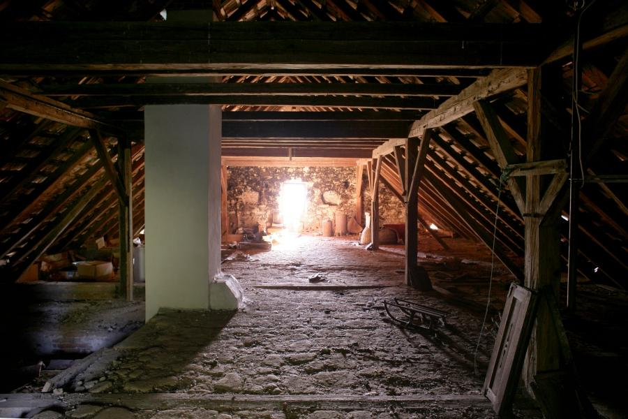 The attic and the basement of the mansion always held the most...