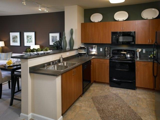 Photos of kitchens with black appliances - Modern kitchen with black appliances ...