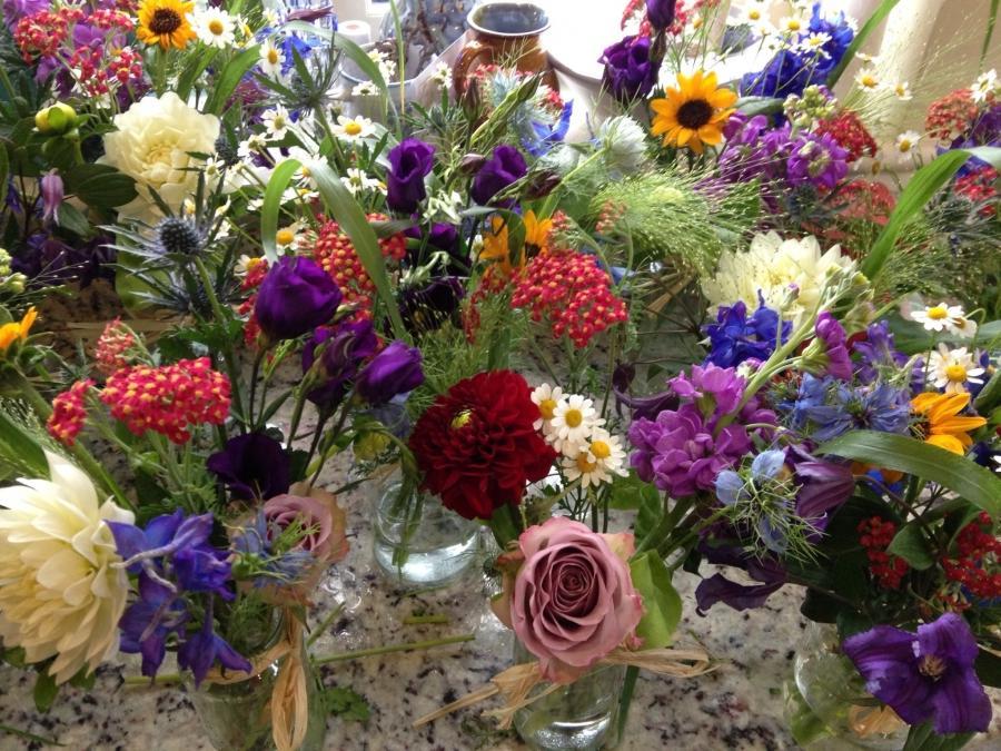 Seasonal Flowers Photos