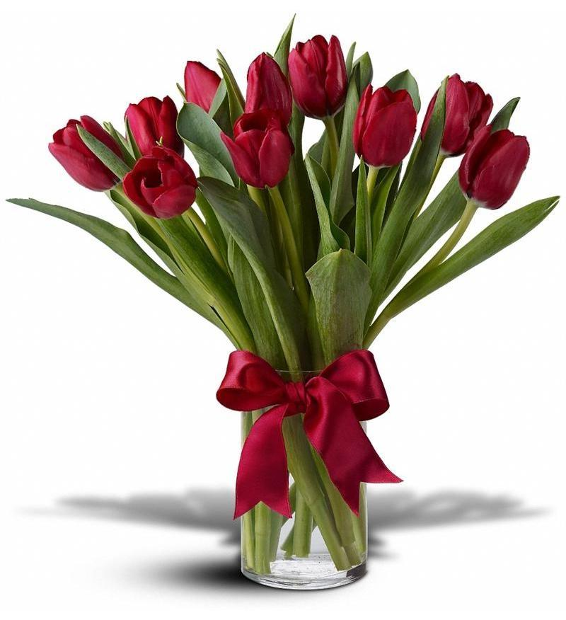 Tulip Flower Arrangement Photos