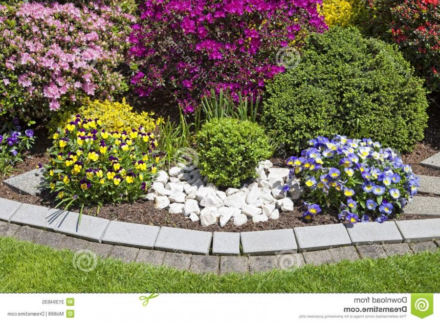 Photos of beautiful flower beds for Beautiful flower beds