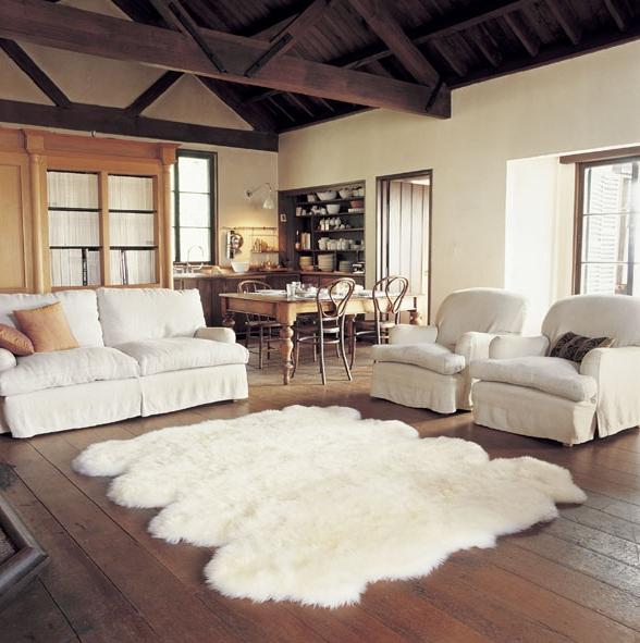 photos of living rooms with area rugs