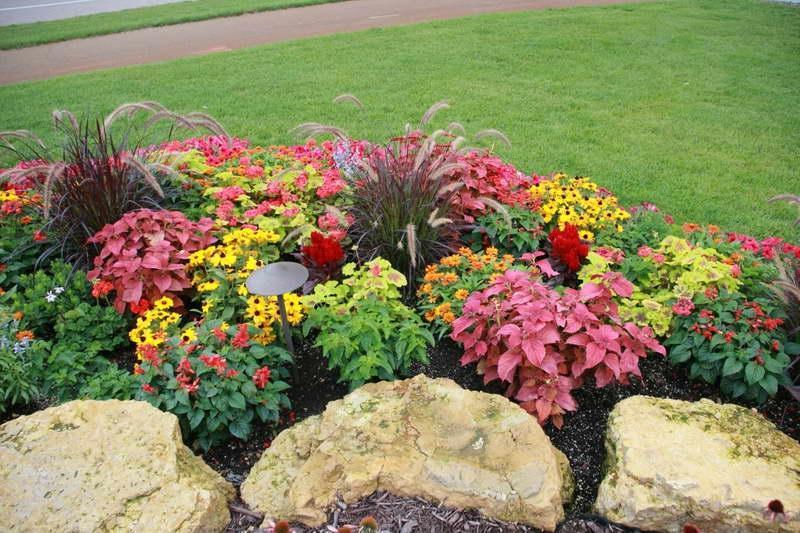 Flower bed designs photos for Annual garden designs