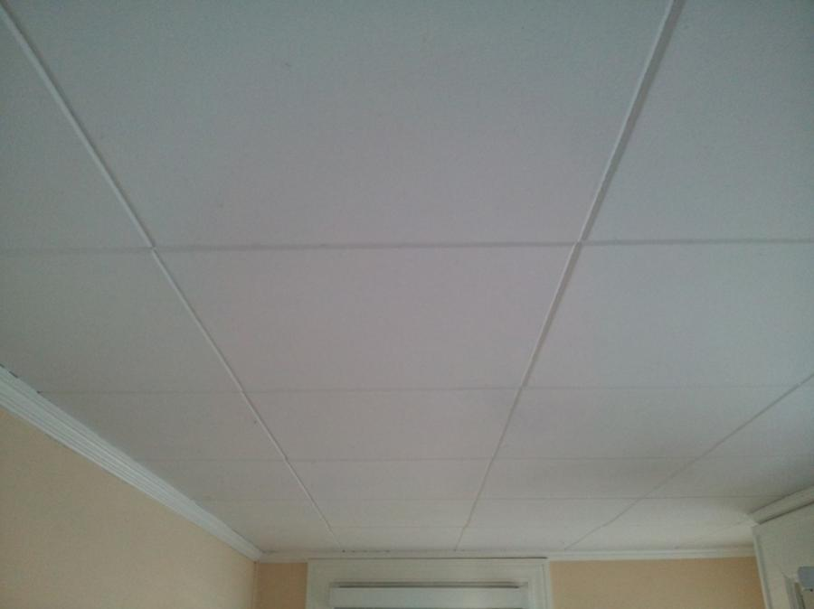 Asbestos Ceiling Tile Photos