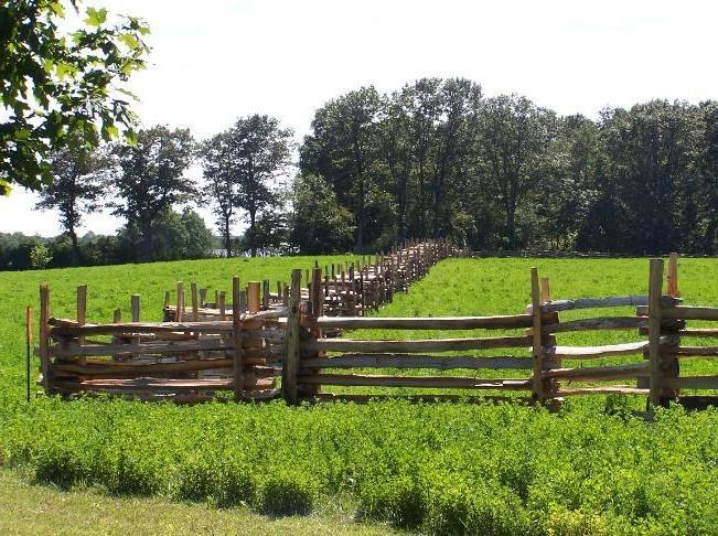 how to build a 4 rail split cedar fence
