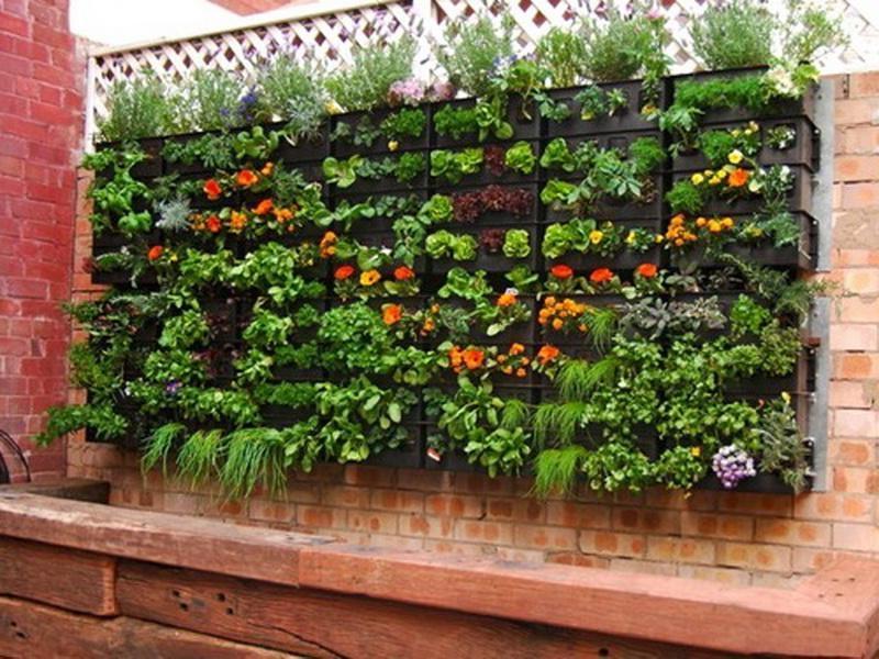 Unique vegetable garden photos for Quick garden design ideas