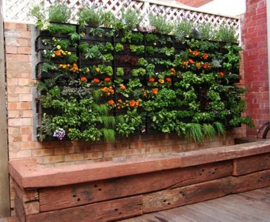 vertical vegetable gardening in small spaces