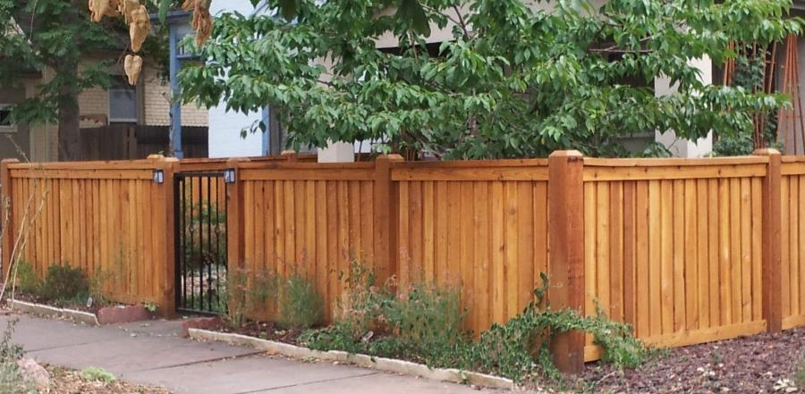 Cedar Fence Design Photos