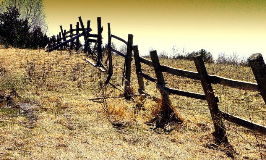 Country Fence Line