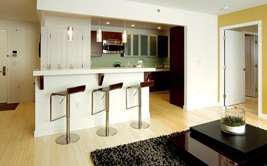 Condominium Kitchen Photos