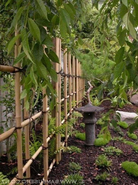 Homemade Bamboo Fence Photos