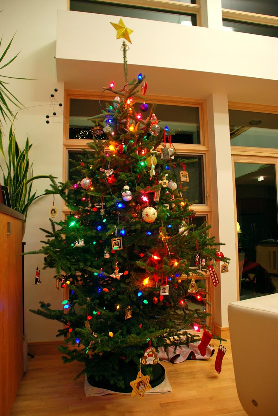 Christmas Tree In Living Room Photos