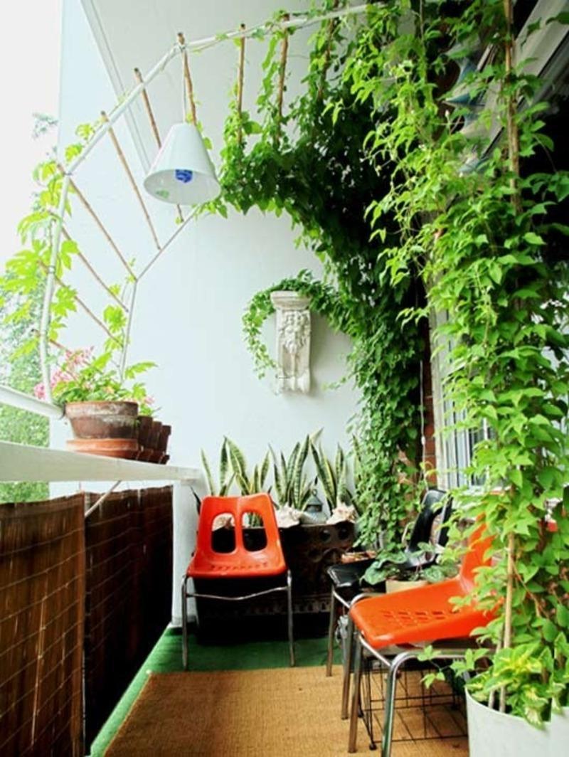 Растения балкон дизайн.