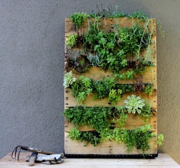 Pallet gardens are amazing u2013 and take up no space at all!...