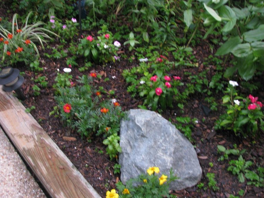 Small backyard garden photos