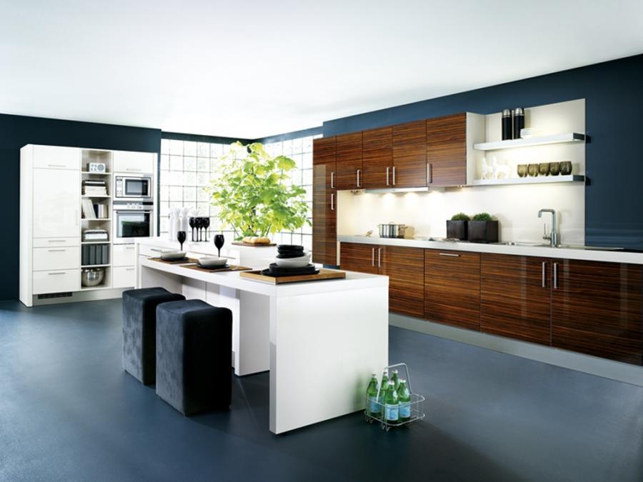 Contemporary kitchen design photos 2010 for Modern kitchen designs 2010