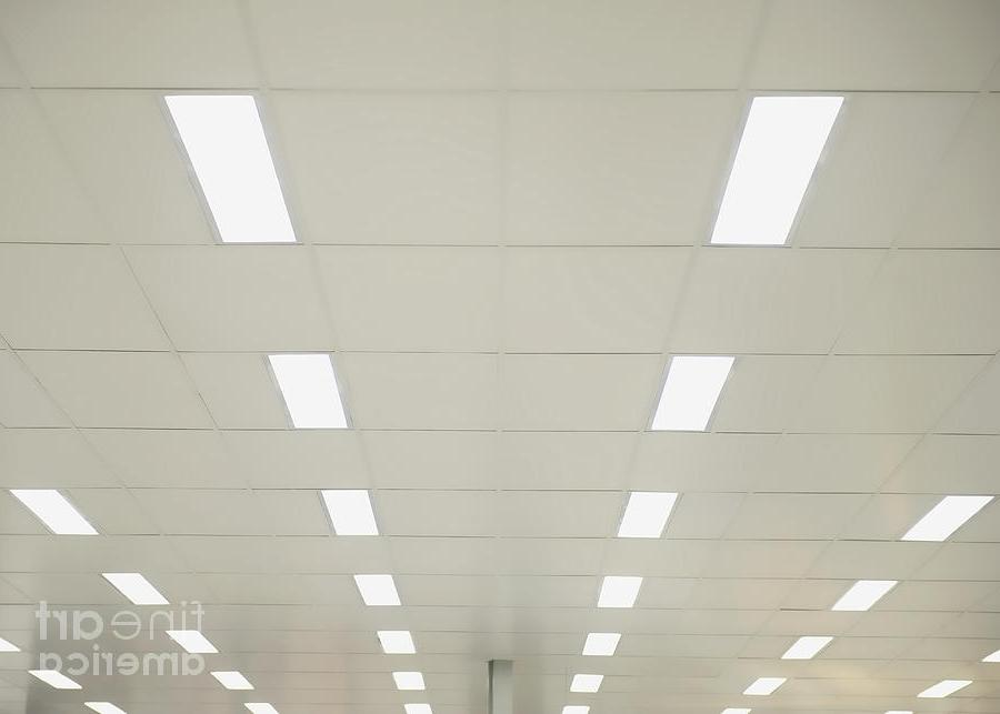 Suspended Ceiling Lights Photograph