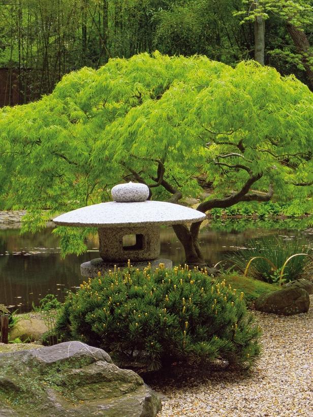 Japanese Garden Photo Gallery