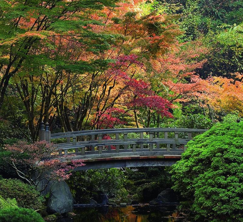 Garden in japanese oregon photo portland - Portland japanese garden free day ...