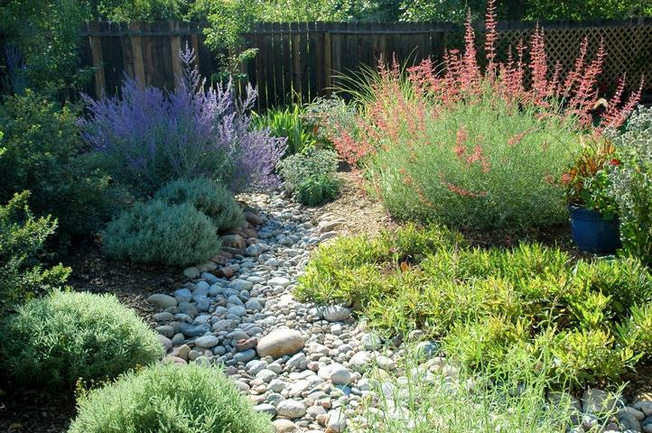 Dry river bed landscaping photos for Dry garden designs